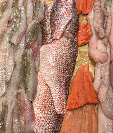 istock Fish on display offered for sale 1180793555