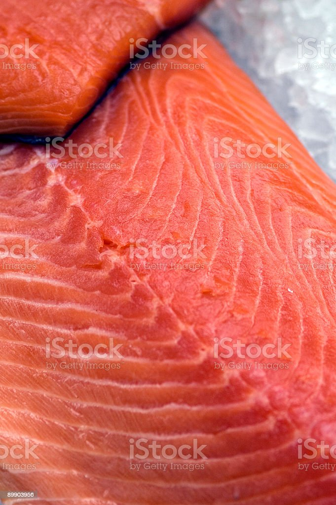 Fish on Ice royalty-free stock photo