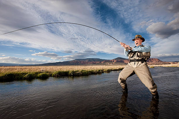 Fish On!  freshwater fishing stock pictures, royalty-free photos & images