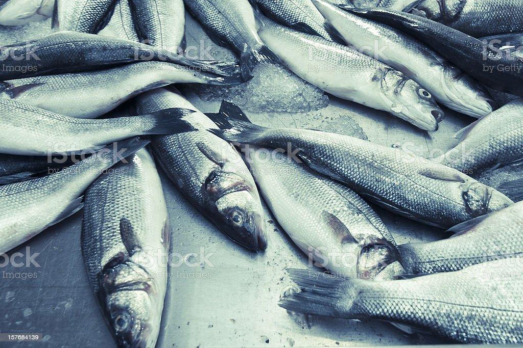Pescado de venta - foto de stock