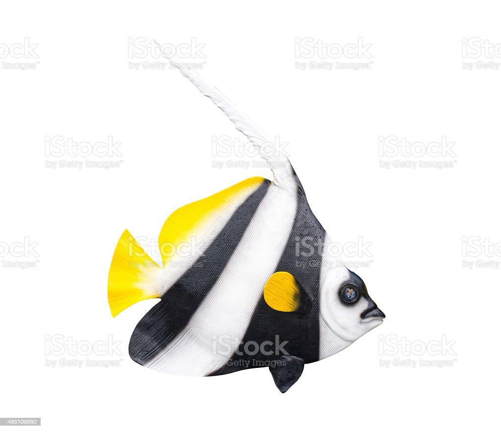 fish on white background. stock photo