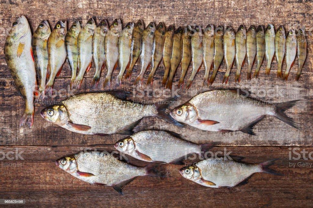 Fish perches and bream on wooden background - Royalty-free Admirar a Vista Foto de stock