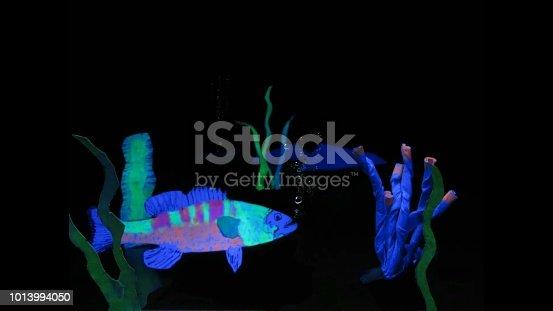 istock fish 1013994050