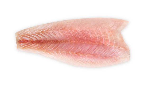 fish Fresh fillet of sea bass on a white background perch fish stock pictures, royalty-free photos & images