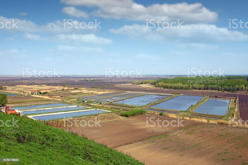 fish pond aerial view agriculture stock photo
