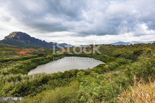 fish pond on kauai island, hawaii islands, usa.