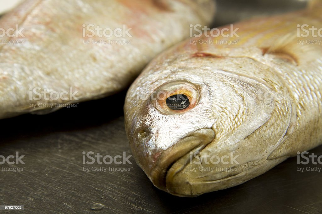 fish ready to cooks royalty-free stock photo