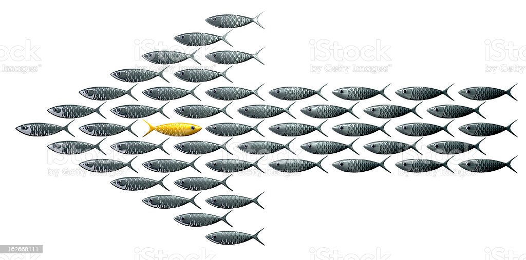 Fish shaped arrow with golden fish on opposite direction stock photo