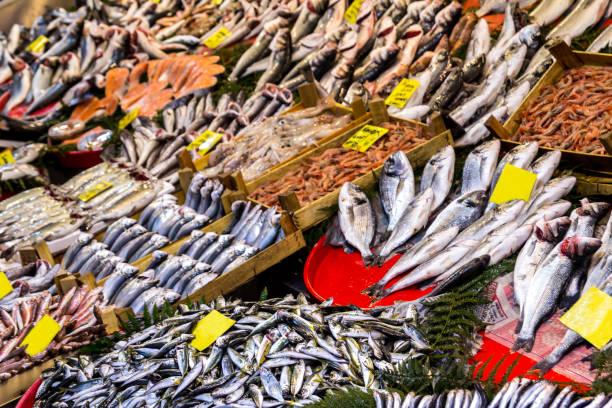 fish shop, mixed type fish and fish stands - organizm żywy zdjęcia i obrazy z banku zdjęć