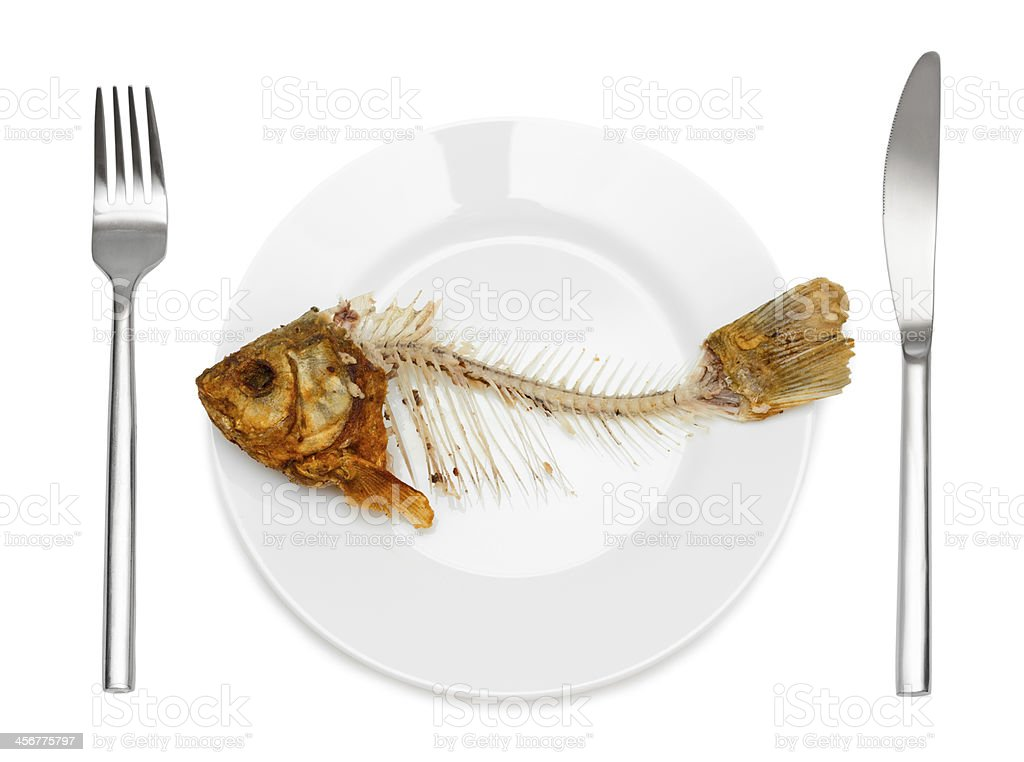 Fish skeleton on the plate stock photo