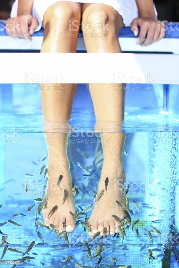 Fish Spa pedicure stock photo