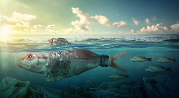 Fisch schwimmt unter Kunststoff Ozeanverunreinigung. Umwelt-Konzept – Foto