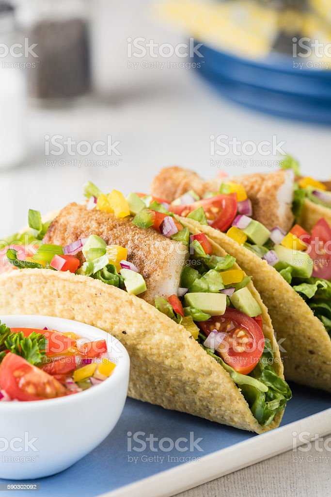 Fish tacos shell with avocado salsa royaltyfri bildbanksbilder