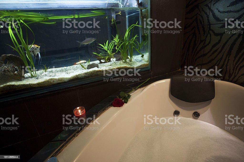 Aquarium Im Badezimmer Stockfoto und mehr Bilder von Abwesenheit