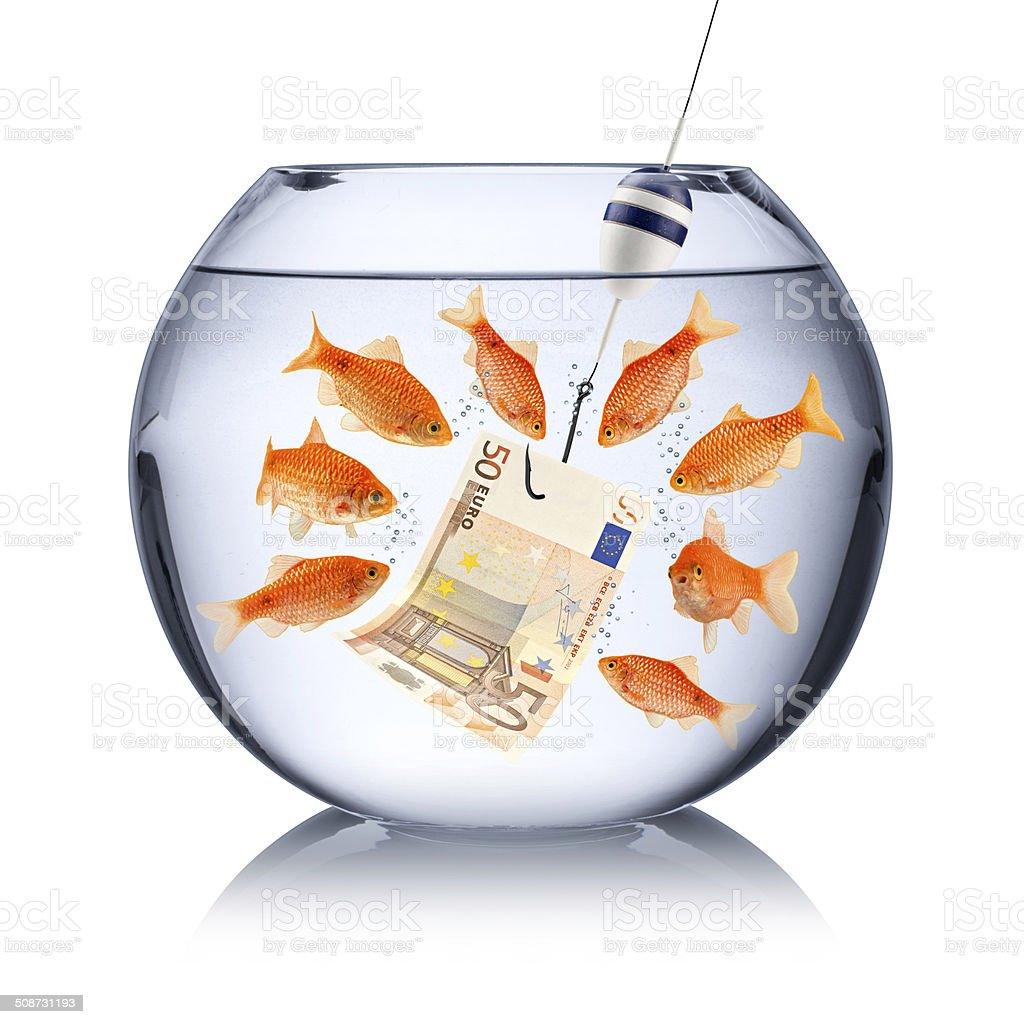 fish temptation concept stock photo