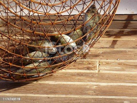 Fish trap on yacht