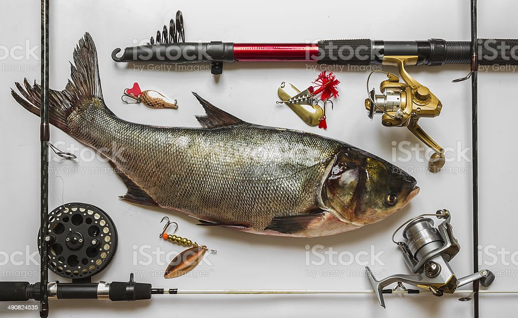 fish with rods and tackle royalty-free stock photo