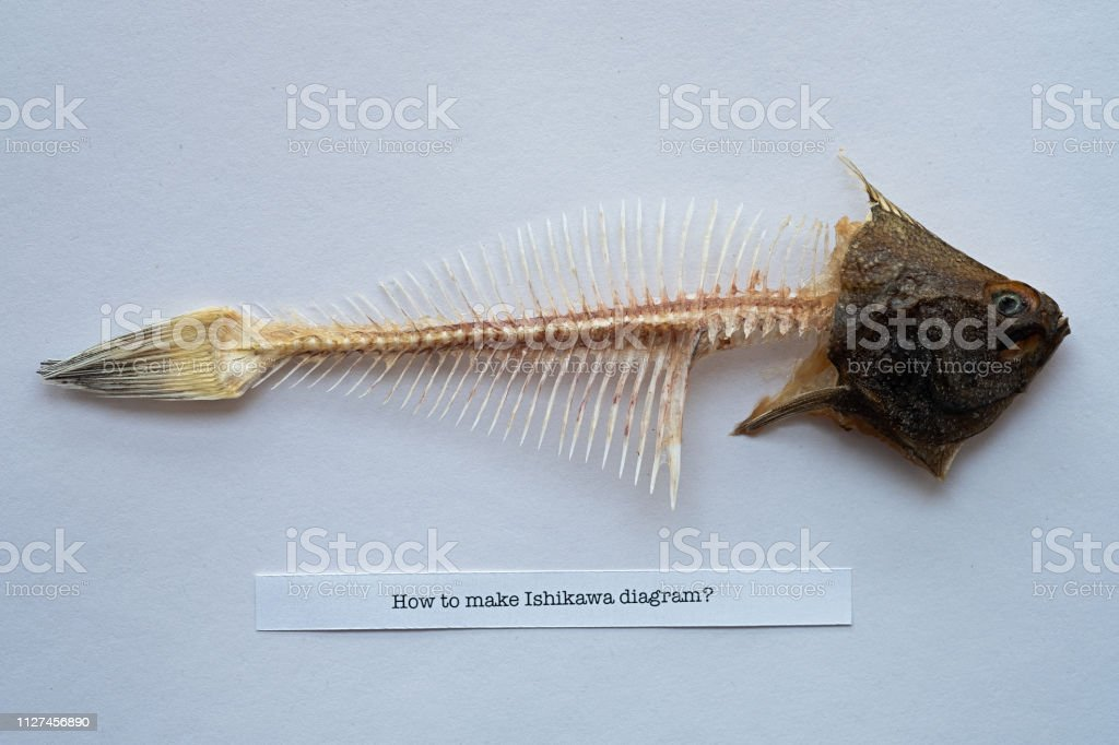 Fishbone with text How to make Ishikawa diagram? stock photo