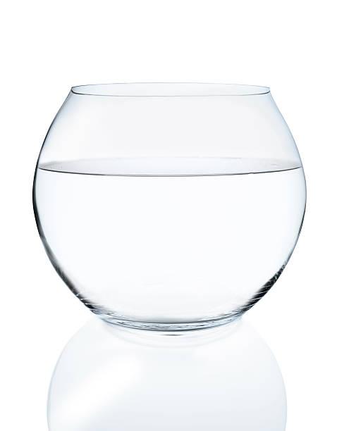 goldfischglas - vase glas stock-fotos und bilder