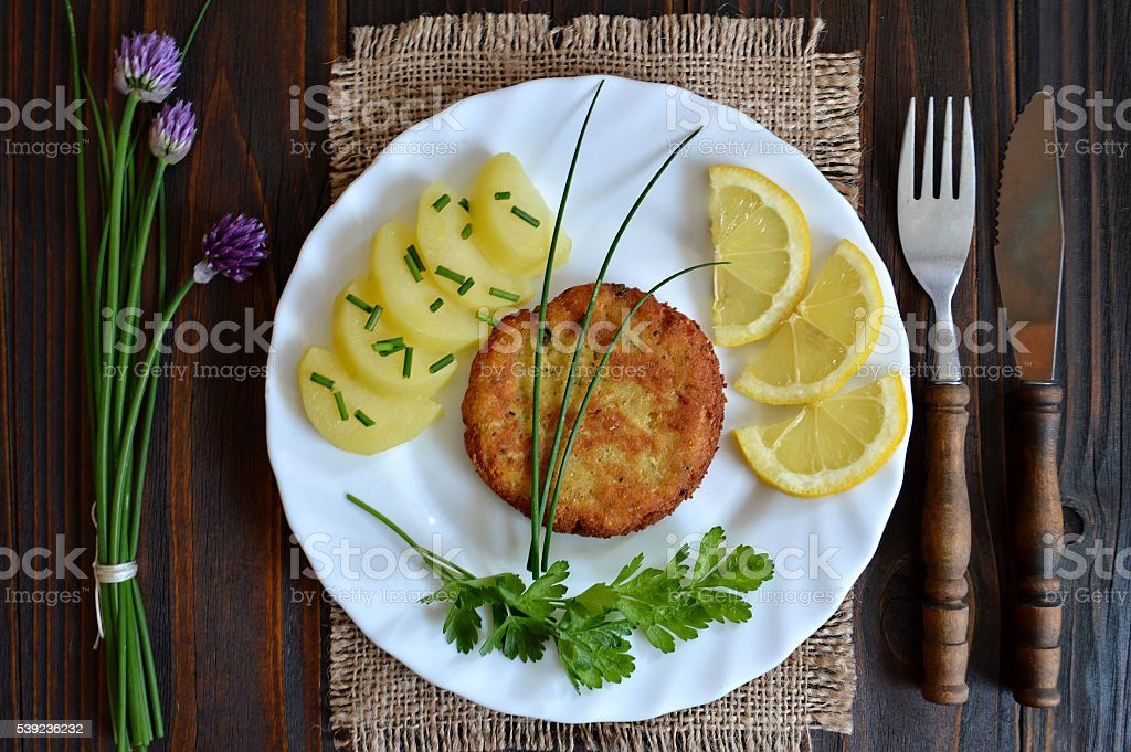 Fishcake on the plate royalty-free stock photo