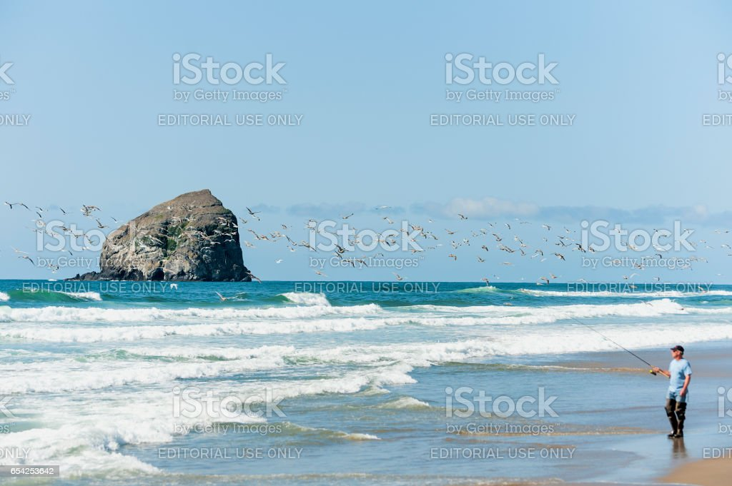 Fisher man fishes the surf along the shores in Pacific City. stock photo