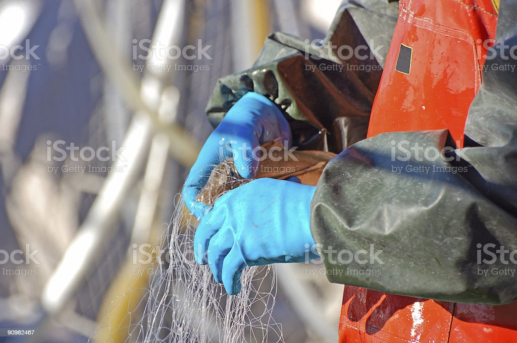Fisherman and fish royalty-free stock photo