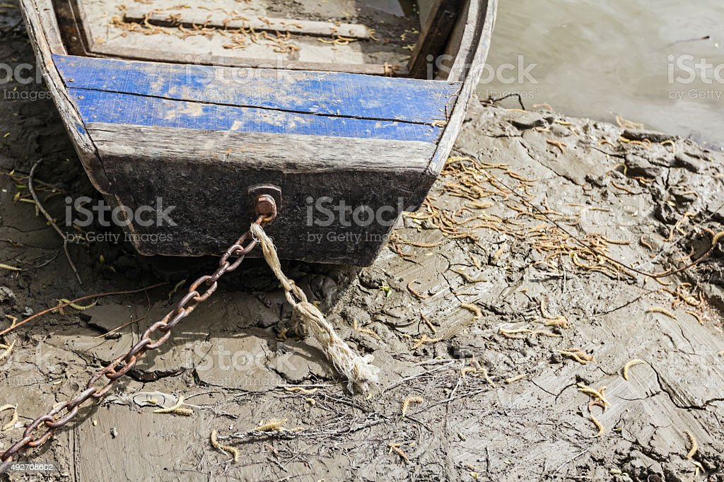 Fisherman boat is tied to the tree. stock photo