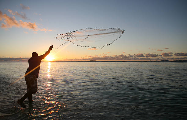 Fisherman casting his net at sunset A man throws a fishing net during sunset in Fiji fishing net stock pictures, royalty-free photos & images