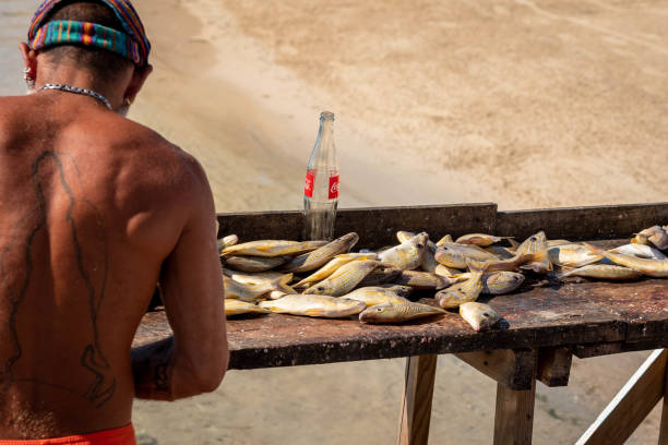 Fisherman cleaning and filleting fresh caught fish on the beach in Belize, Central America.