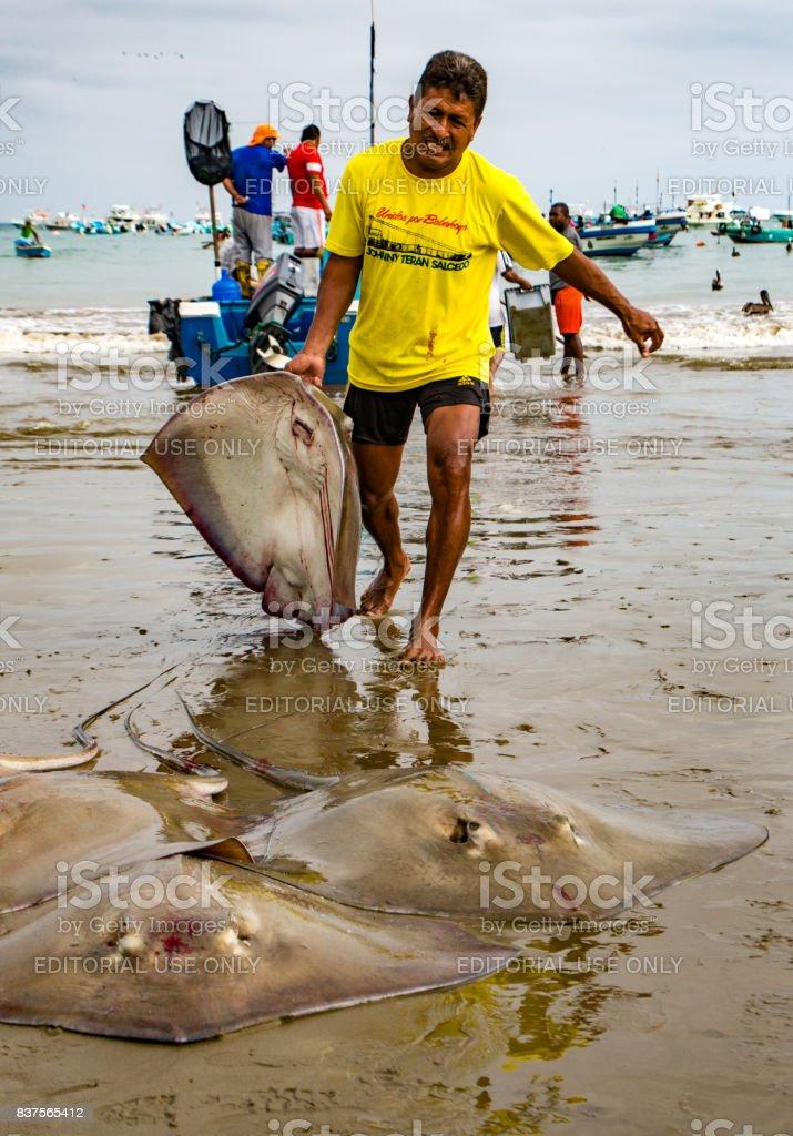 Fisherman hauls flounders onto beach stock photo