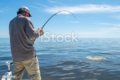 A fisherman sets the hook on a large fish in the Gulf of Mexico