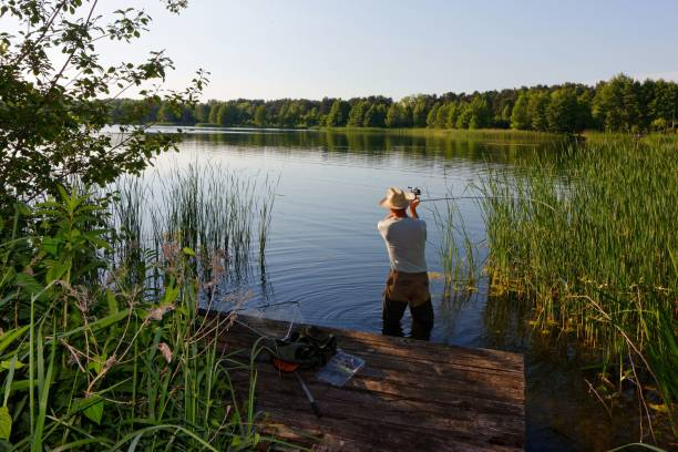 fisherman fisherman catching the fish durring sunny day freshwater fishing stock pictures, royalty-free photos & images