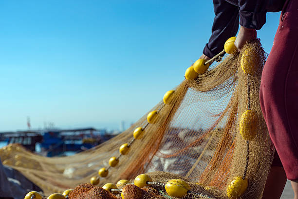Fisherman FishermanFisherman fisherman stock pictures, royalty-free photos & images