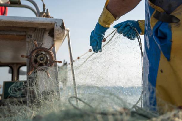 fischer ziehen im netz - segelhandschuhe stock-fotos und bilder