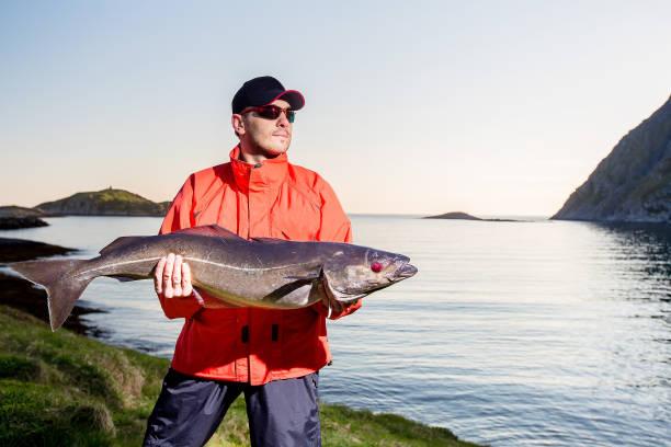 visser sportman trofee in zijn handen. grote vissen. 's avonds. noorwegen - foto's van hands stockfoto's en -beelden