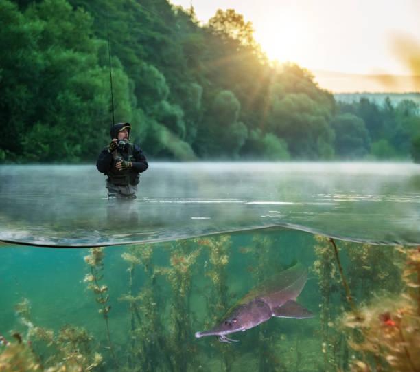 fisherman trying to catch predator fish, half to half image mantage - fishman imagens e fotografias de stock