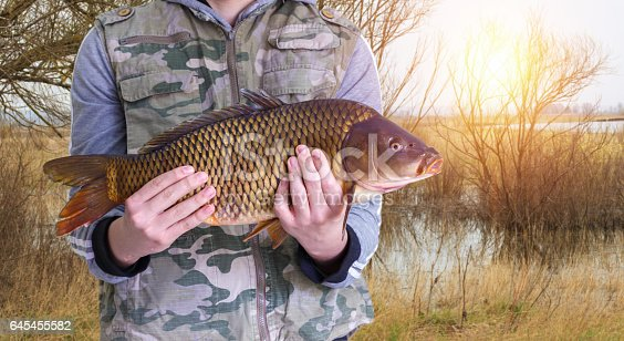 istock Fisherman with carp in hands on the background of the pond. 645455582