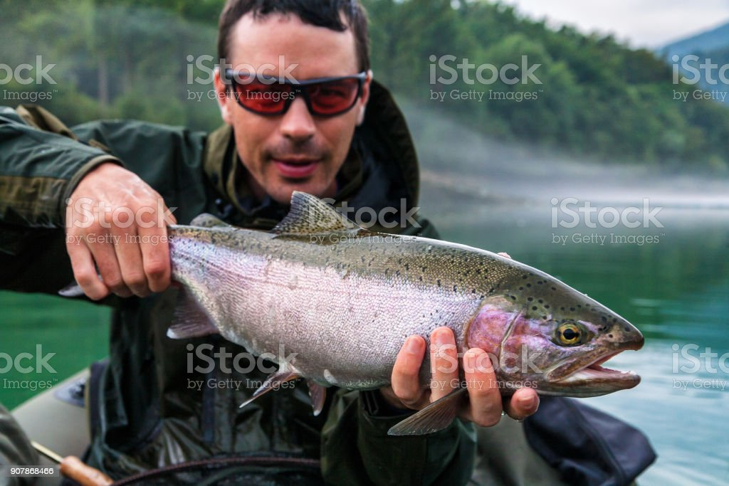Fisherman with catch of Rainbow trout, Slovenia stock photo