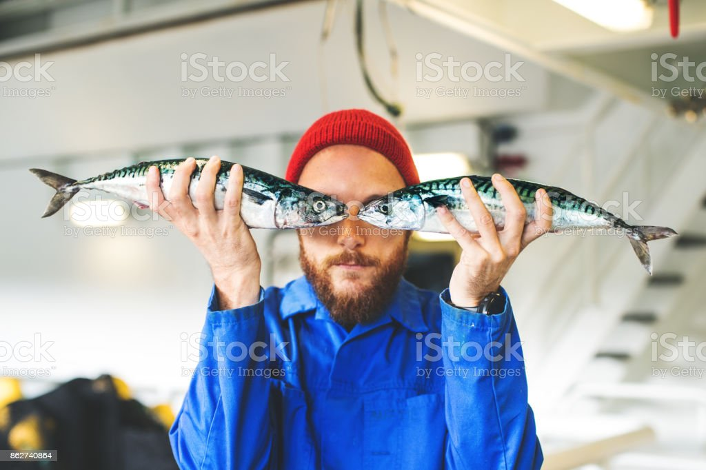 Fisherman with fresh fish on the fishing boat deck stock photo