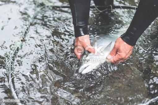 istock A Fisherman's Tale 949285658