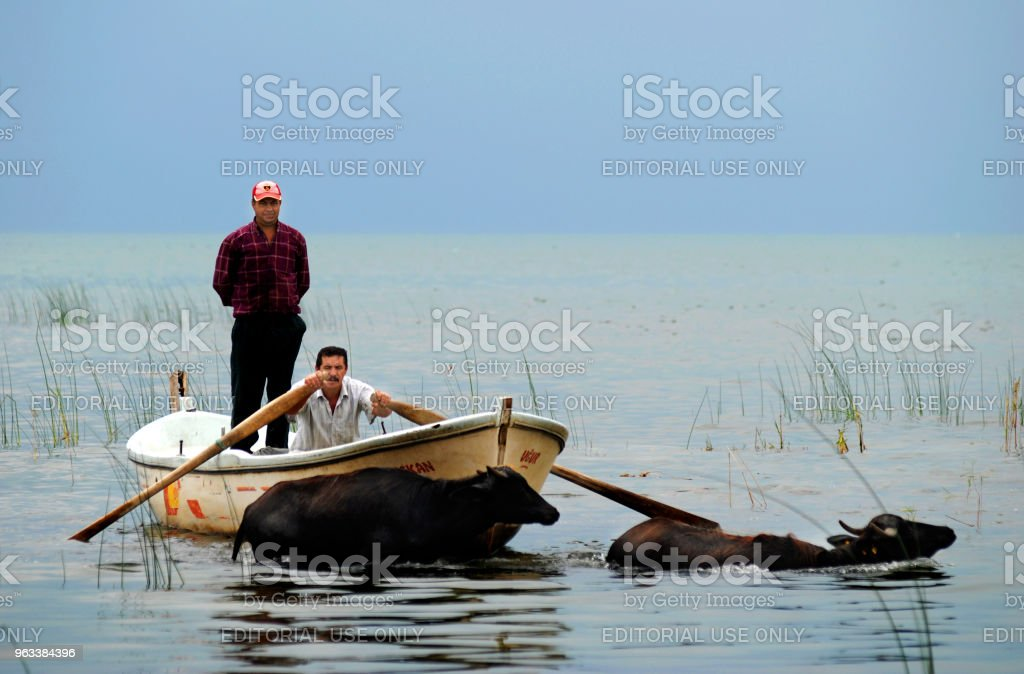 Fiskare och mandat i sjön Iznik, Iznik, Turkiet - Royaltyfri Blå Bildbanksbilder