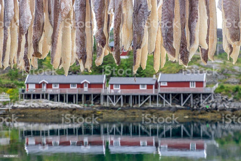 https://www.istockphoto.com/no/photo/fishermen-cabins-gm590168912-101445189