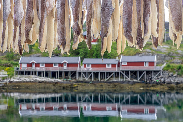 Fishermen cabins stock photo