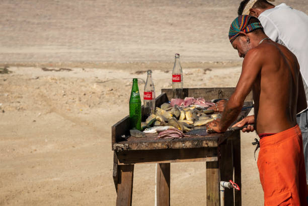 Fishermen cleaning and filleting fresh caught fish on the beach in Belize, Central America.