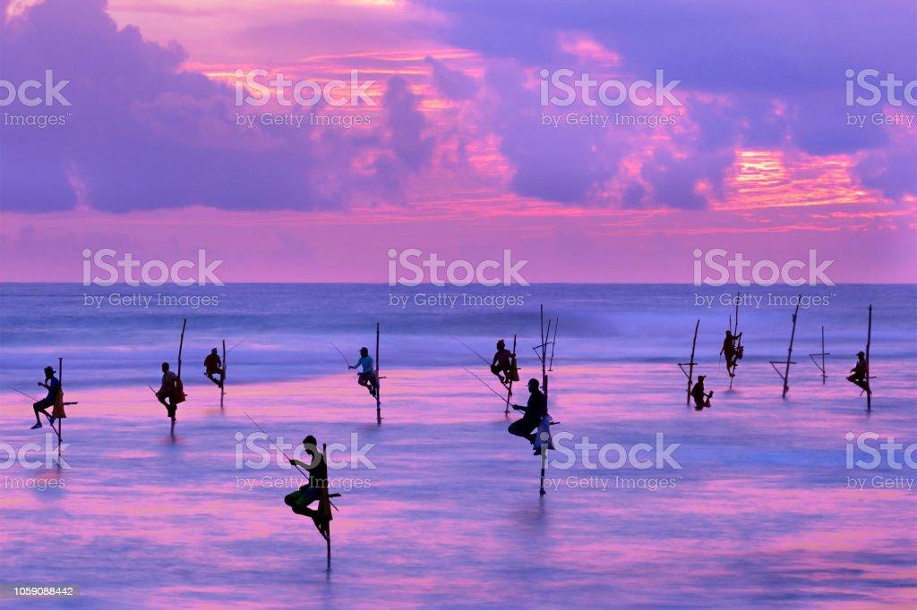 Fishermen on stilts in silhouette at the sunset in Galle, Sri Lanka stock photo