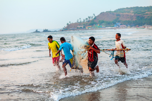 GOA, INDIA - NOVEMBER 17, 2011: Fishermen coming back from the sea with catch in Goa, India