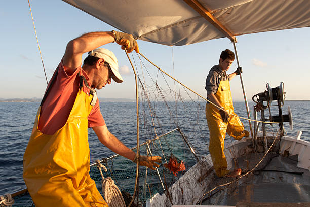 Fishermen working on the boat. Two fishermen working on a boat in the Mediterranean Sea, in the morning outdoors with the sea in the background. Father and son wearing fishing clothes work together collecting fishing nets. fisherman stock pictures, royalty-free photos & images