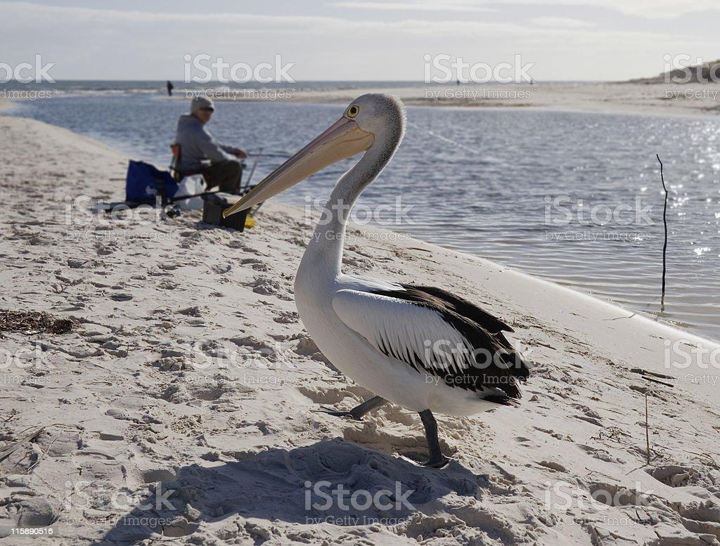 Fishers stock photo