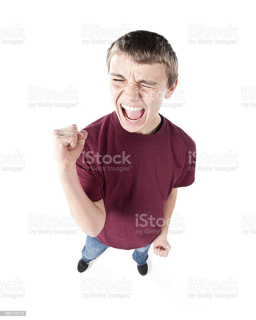 Fisheye Caricature of an Excited Teenage Boy royalty-free stock photo