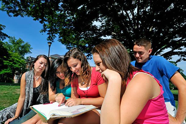 Fisheye of teenage students studying a book outdoors. stock photo